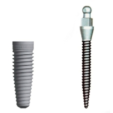 comparison of the affordable mini implant with the standard size implant